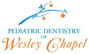 Pediatric Dentistry Wesley Chapel